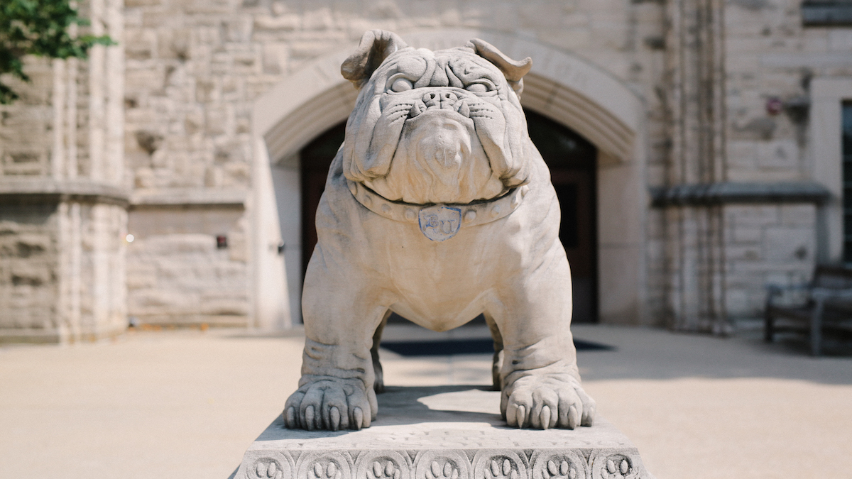 Image from Butler bulldog statue article