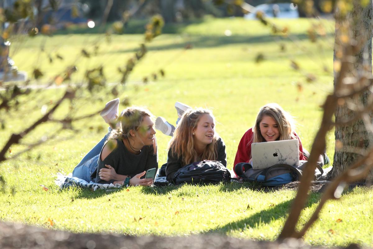 Students Studying on the Mall